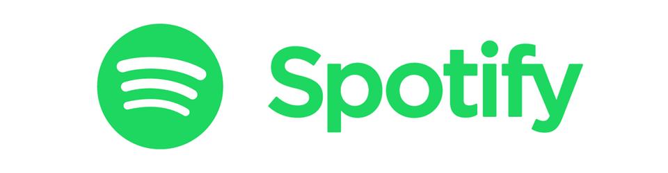 Spotify Windows Music Player