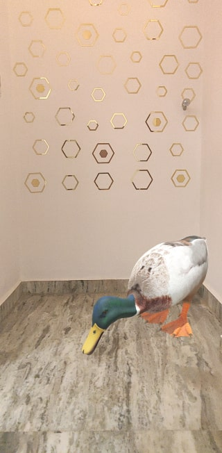 Google Duck 3D