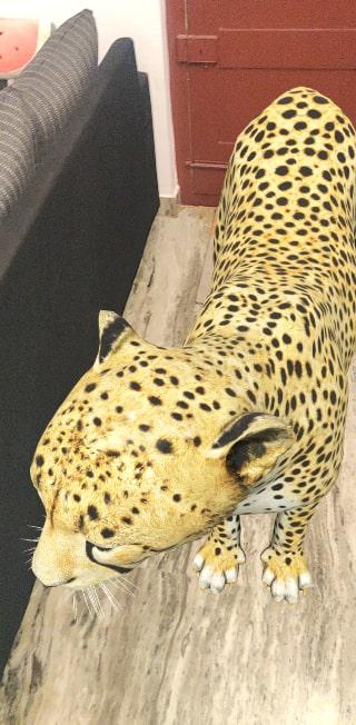 Google 3D Cheetah