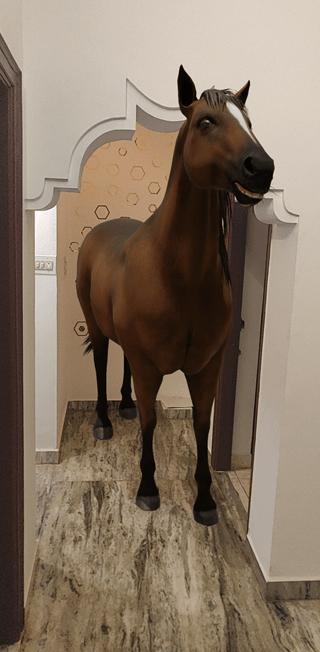 Google Horse 3D