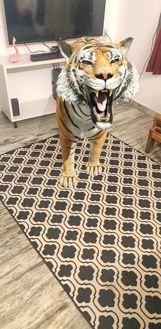 Google 3D Tiger